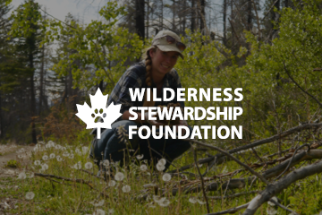 Wilderness Stewardship Foundation Logo