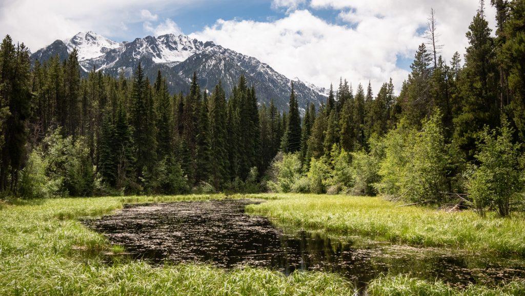 Quiet Chilcotin Mountains