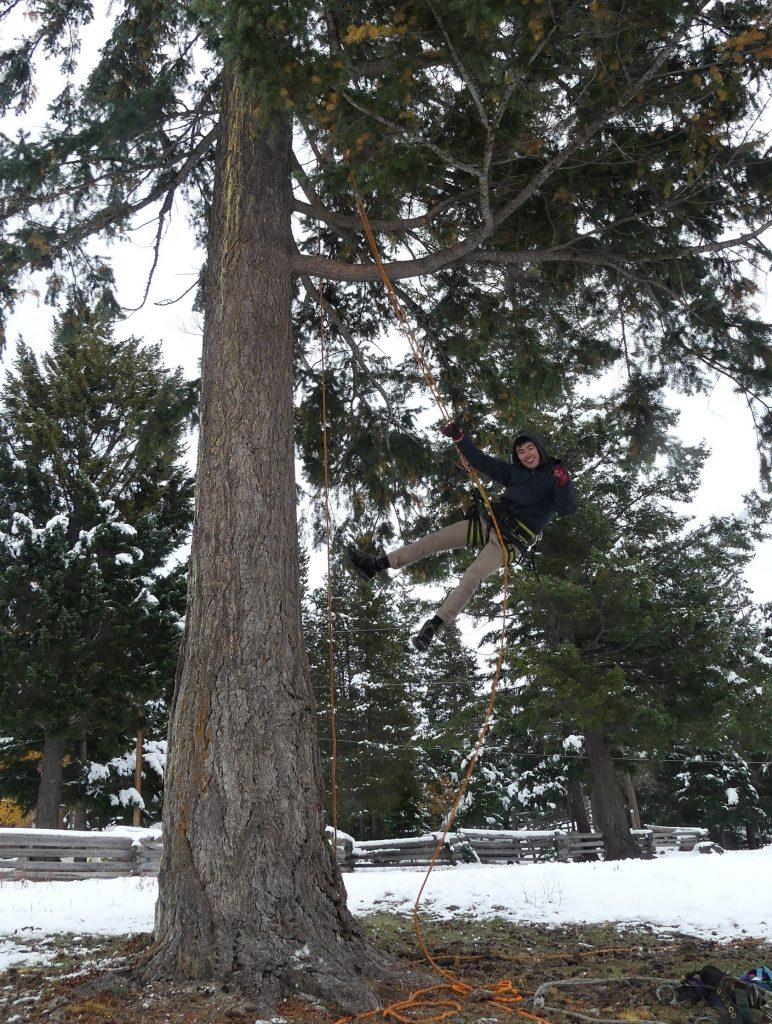 Ethan Tree Climbing