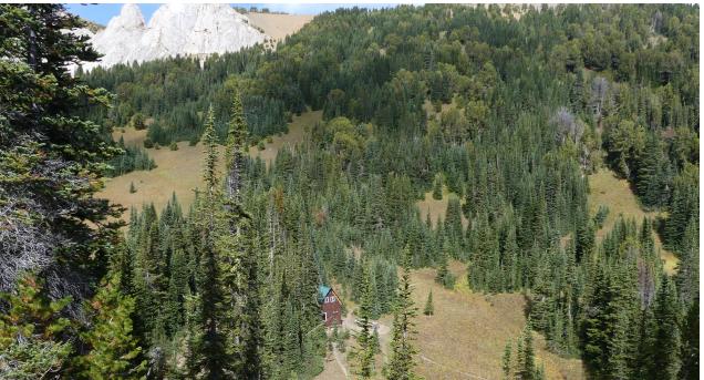 Wilderness Mountain Cabin Rental