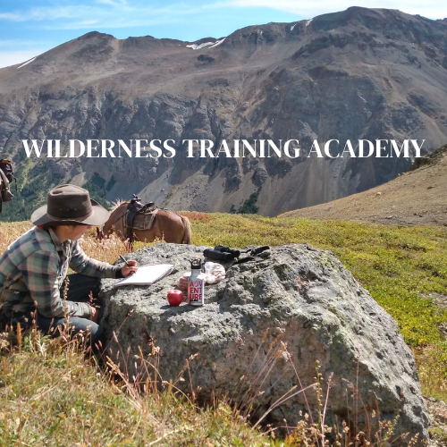 Learning in the Wilderness
